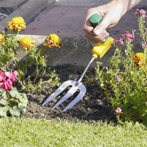 Tips How To Planting And Gardening The Easy Way